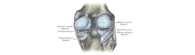 Ejercicios para rehabilitación de la rodilla